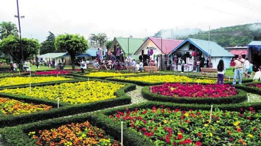 Boquete Coffee and Flower Festival